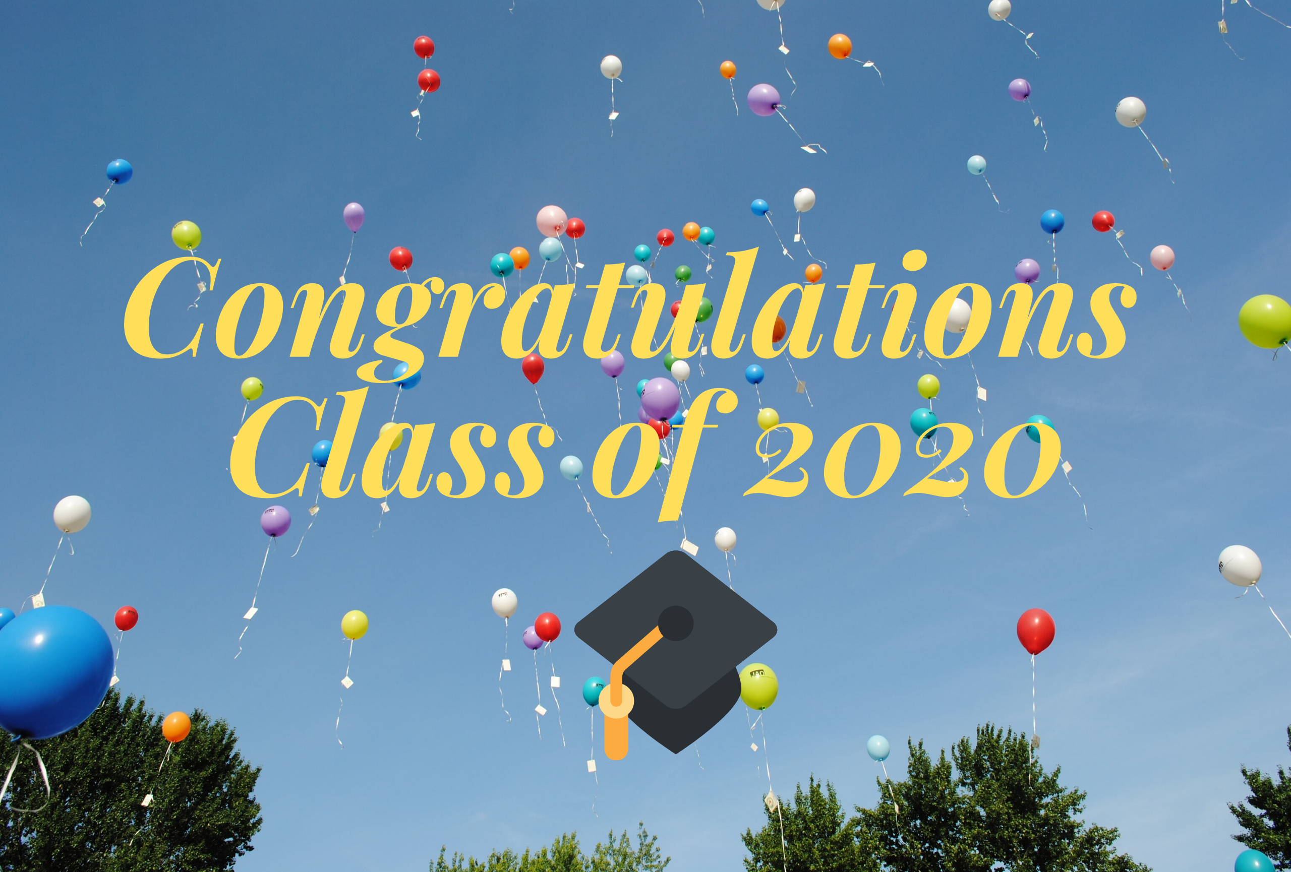 Click here to view our 2020 scholarship recipients!